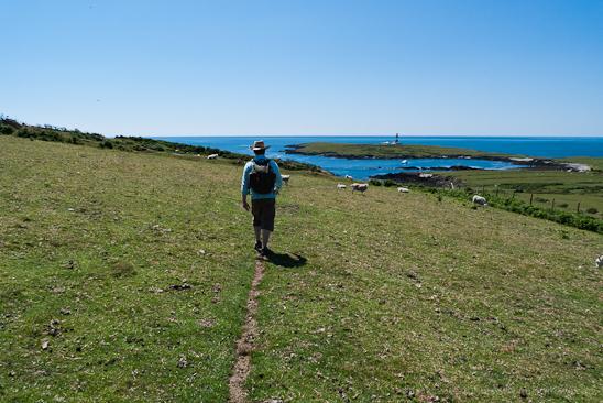 Jack Lowe on Bardsey Island, Lleyn Peninsula, Wales