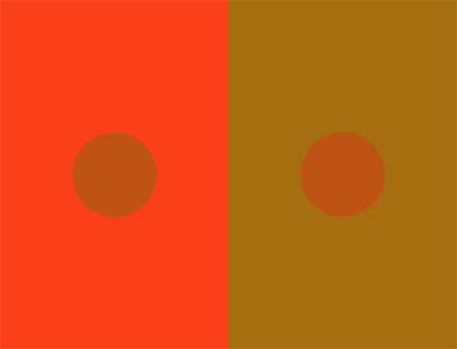 Standard Colour Test from Purves Lab