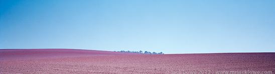 Field, Photography by Jack Lowe