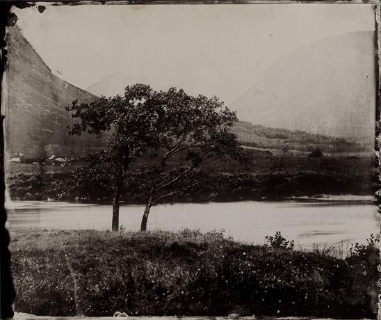 12x10 inch Tintype by Jack Lowe